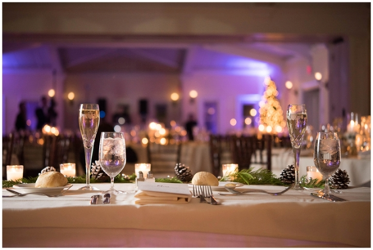 whitby_castle_rye_westchester_romantic_soft_winter_wedding_photography_69