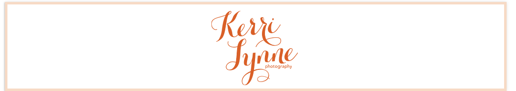 Hudson Valley Wedding Portrait & Fine Art Photographer logo